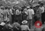 Image of Tibetan refugees India, 1959, second 25 stock footage video 65675043372