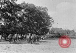 Image of Hitler Youth Poland, 1940, second 44 stock footage video 65675043394