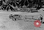 Image of Hitler Youth Poland, 1940, second 2 stock footage video 65675043401