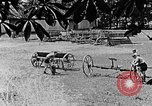 Image of Hitler Youth Poland, 1940, second 4 stock footage video 65675043401