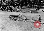 Image of Hitler Youth Poland, 1940, second 8 stock footage video 65675043401