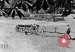 Image of Hitler Youth Poland, 1940, second 9 stock footage video 65675043401