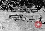 Image of Hitler Youth Poland, 1940, second 10 stock footage video 65675043401