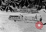 Image of Hitler Youth Poland, 1940, second 12 stock footage video 65675043401