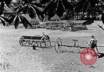 Image of Hitler Youth Poland, 1940, second 15 stock footage video 65675043401