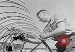 Image of Hitler Youth Poland, 1940, second 28 stock footage video 65675043401