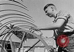 Image of Hitler Youth Poland, 1940, second 29 stock footage video 65675043401