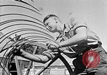 Image of Hitler Youth Poland, 1940, second 31 stock footage video 65675043401