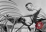 Image of Hitler Youth Poland, 1940, second 32 stock footage video 65675043401
