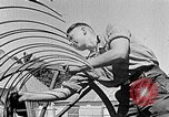 Image of Hitler Youth Poland, 1940, second 33 stock footage video 65675043401