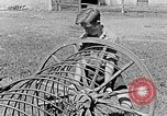 Image of Hitler Youth Poland, 1940, second 38 stock footage video 65675043401