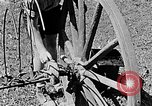 Image of Hitler Youth Poland, 1940, second 44 stock footage video 65675043401