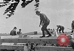Image of Hitler Youth Poland, 1940, second 53 stock footage video 65675043401