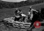 Image of Aggressors troops Vieques Island Puerto Rico, 1950, second 37 stock footage video 65675043406