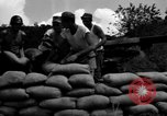Image of Aggressors troops Vieques Island Puerto Rico, 1950, second 41 stock footage video 65675043406