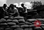 Image of Aggressors troops Vieques Island Puerto Rico, 1950, second 43 stock footage video 65675043406