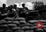Image of Aggressors troops Vieques Island Puerto Rico, 1950, second 44 stock footage video 65675043406