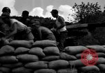 Image of Aggressors troops Vieques Island Puerto Rico, 1950, second 46 stock footage video 65675043406