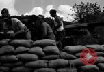 Image of Aggressors troops Vieques Island Puerto Rico, 1950, second 47 stock footage video 65675043406