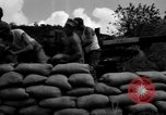Image of Aggressors troops Vieques Island Puerto Rico, 1950, second 48 stock footage video 65675043406