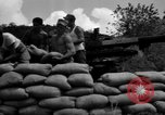 Image of Aggressors troops Vieques Island Puerto Rico, 1950, second 50 stock footage video 65675043406