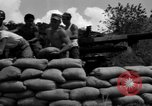 Image of Aggressors troops Vieques Island Puerto Rico, 1950, second 51 stock footage video 65675043406