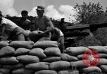 Image of Aggressors troops Vieques Island Puerto Rico, 1950, second 54 stock footage video 65675043406