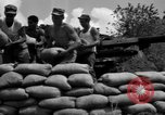 Image of Aggressors troops Vieques Island Puerto Rico, 1950, second 55 stock footage video 65675043406