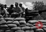 Image of Aggressors troops Vieques Island Puerto Rico, 1950, second 56 stock footage video 65675043406