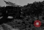 Image of Aggressors troops Vieques Island Puerto Rico, 1950, second 7 stock footage video 65675043407