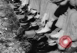 Image of Gun cotton factory World War 2 United States USA, 1945, second 17 stock footage video 65675043429