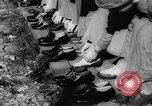 Image of Gun cotton factory World War 2 United States USA, 1945, second 18 stock footage video 65675043429