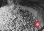 Image of Gun cotton factory World War 2 United States USA, 1945, second 44 stock footage video 65675043429