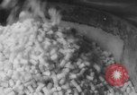 Image of Gun cotton factory World War 2 United States USA, 1945, second 45 stock footage video 65675043429