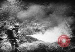 Image of American soldiers and marines battle Japanese forces in Okinawa Okinawa Ryukyu Islands, 1945, second 16 stock footage video 65675043441