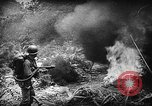 Image of American soldiers and marines battle Japanese forces in Okinawa Okinawa Ryukyu Islands, 1945, second 17 stock footage video 65675043441