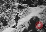Image of American soldiers and marines battle Japanese forces in Okinawa Okinawa Ryukyu Islands, 1945, second 53 stock footage video 65675043441