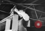 Image of New houses constructed Europe, 1945, second 45 stock footage video 65675043443