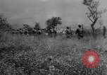 Image of Allied troops Cassino Italy, 1945, second 20 stock footage video 65675043445