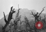 Image of Allied troops Cassino Italy, 1945, second 59 stock footage video 65675043445