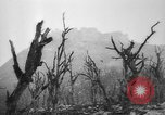 Image of Allied troops Cassino Italy, 1945, second 60 stock footage video 65675043445