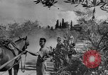 Image of King George VI Florence Italy, 1944, second 42 stock footage video 65675043451