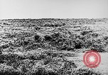 Image of Italian troops Italy, 1943, second 11 stock footage video 65675043456
