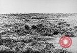 Image of Italian troops Italy, 1943, second 12 stock footage video 65675043456