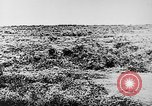 Image of Italian troops Italy, 1943, second 13 stock footage video 65675043456