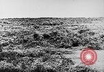 Image of Italian troops Italy, 1943, second 18 stock footage video 65675043456