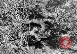 Image of Italian troops Italy, 1943, second 44 stock footage video 65675043456