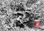 Image of Italian troops Italy, 1943, second 45 stock footage video 65675043456