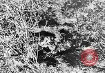 Image of Italian troops Italy, 1943, second 46 stock footage video 65675043456