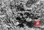 Image of Italian troops Italy, 1943, second 49 stock footage video 65675043456